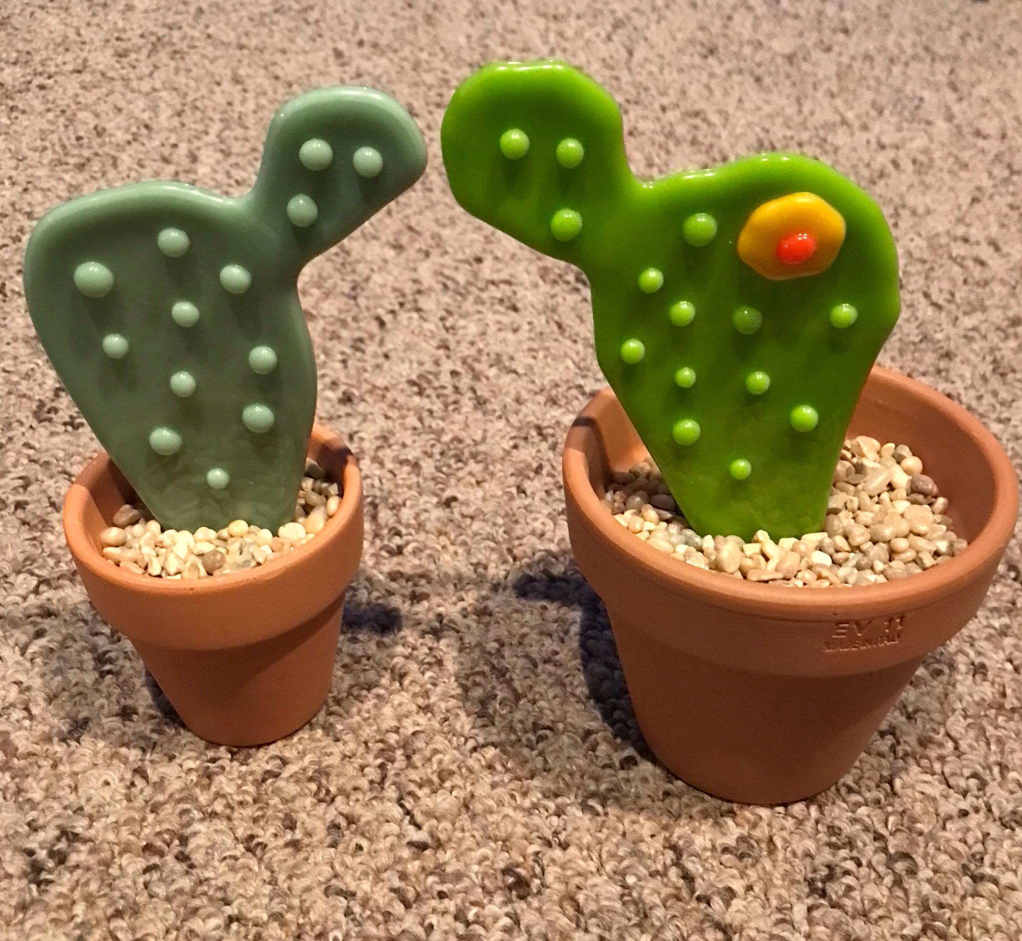 Hearts Stars Roses- cactus