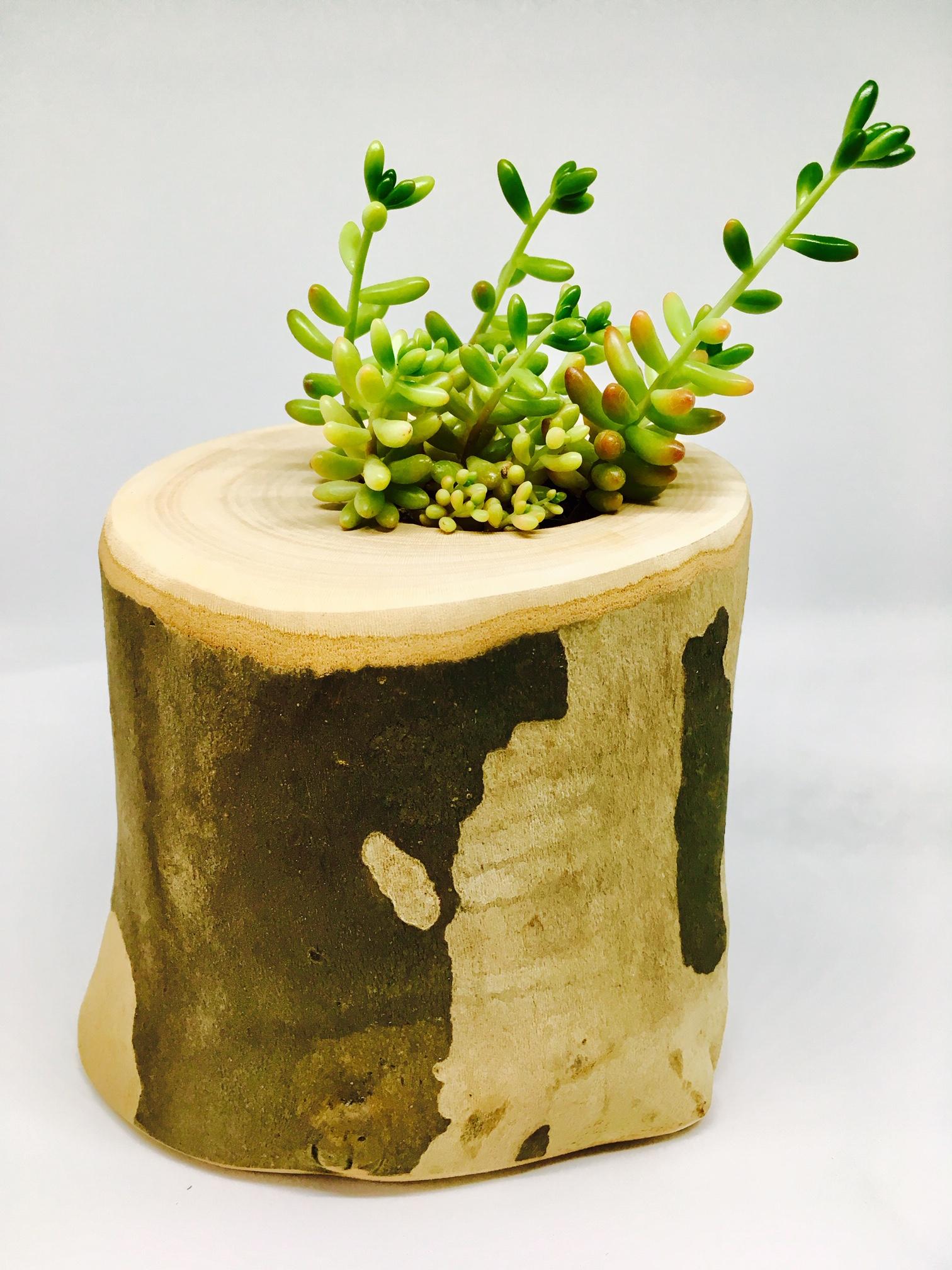 MasonMade Succulent Planter