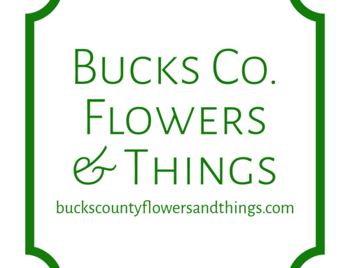 Bucks County Flowers + Things